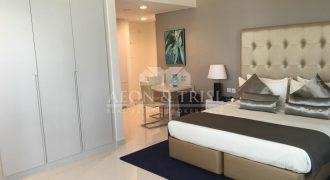Luxury Furnished Unit with Balcony| Vacant Ready