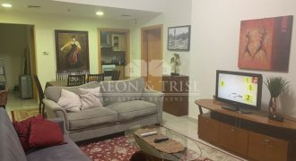 Specious 0ne Bed furnished  Apartment near metro